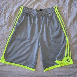 Adidas Grey w/ Neon Green Shorts
